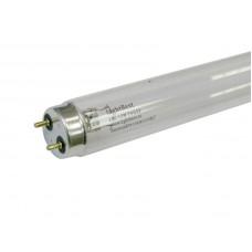 Лампа ультрафиолетовая LightBest LBC T8 G13
